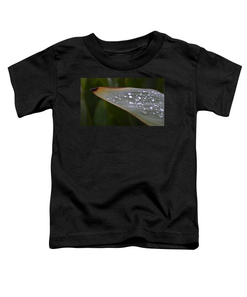 Hurricane Raindrops Toddler T-Shirt