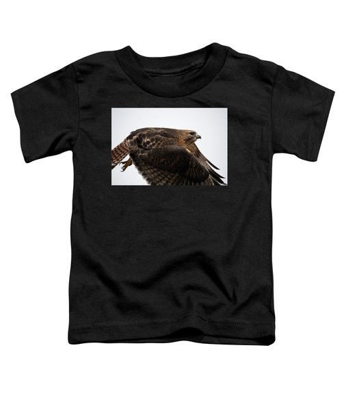 Hybrid Hawk Flyby  Toddler T-Shirt