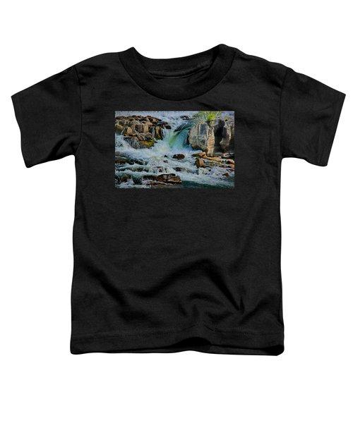Idaho Falls Toddler T-Shirt