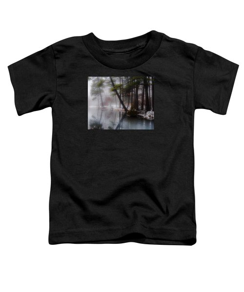 In A Fog Toddler T-Shirt