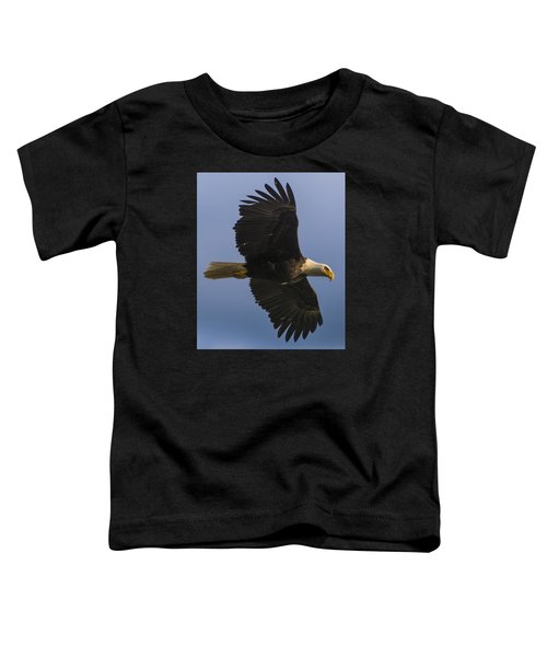 In Flight Toddler T-Shirt by Gary Lengyel