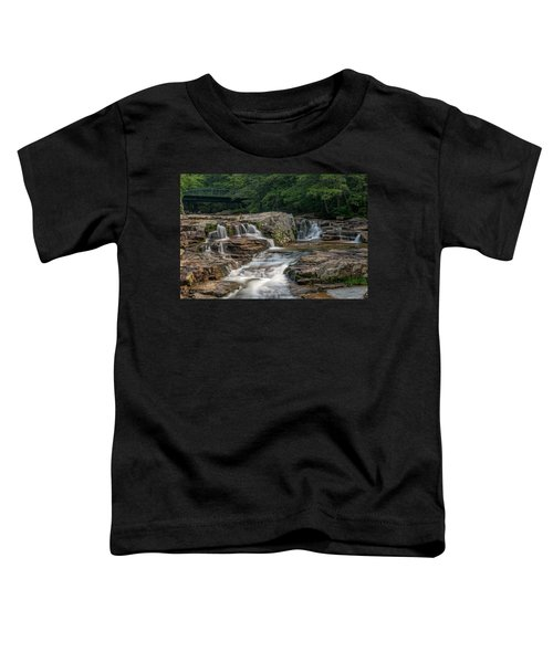 Jackson Falls Toddler T-Shirt