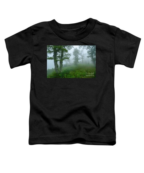 Jewell Hollow Overlook Toddler T-Shirt