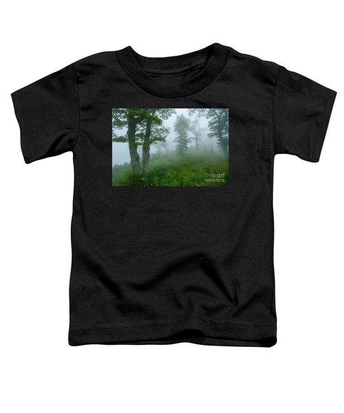 Jewell Hollow Overlook Toddler T-Shirt