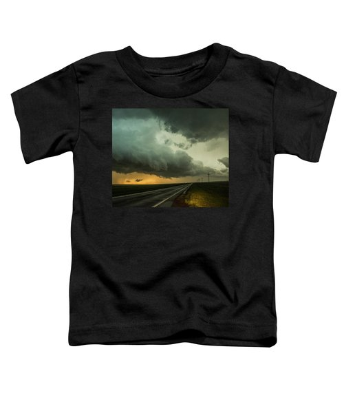 Kansas Storm Chase Bust Day 004 Toddler T-Shirt