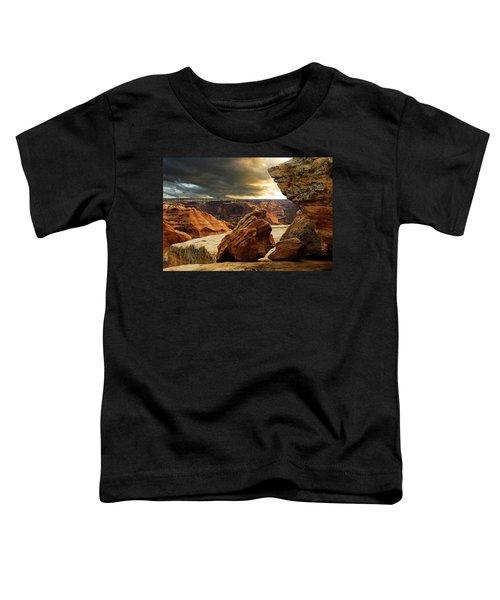 Kissing Rocks Toddler T-Shirt