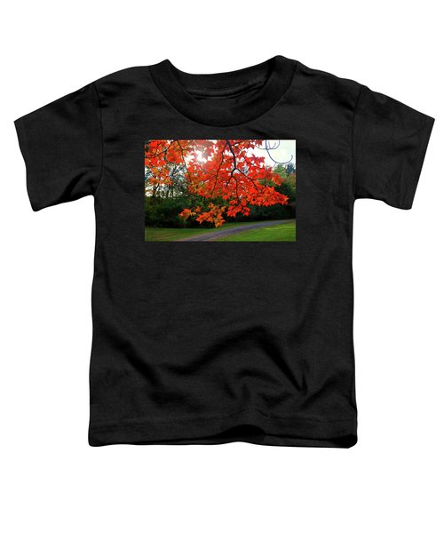 Knox Park 8444 Toddler T-Shirt