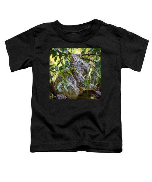 Koala Joey Toddler T-Shirt by Jamie Pham