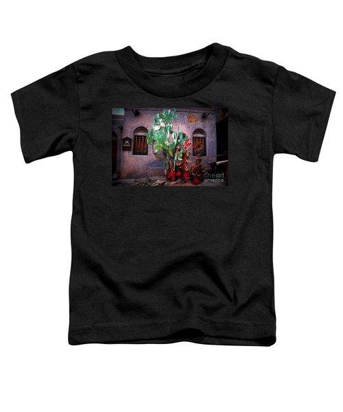 La Hacienda In Old Tuscon Az Toddler T-Shirt