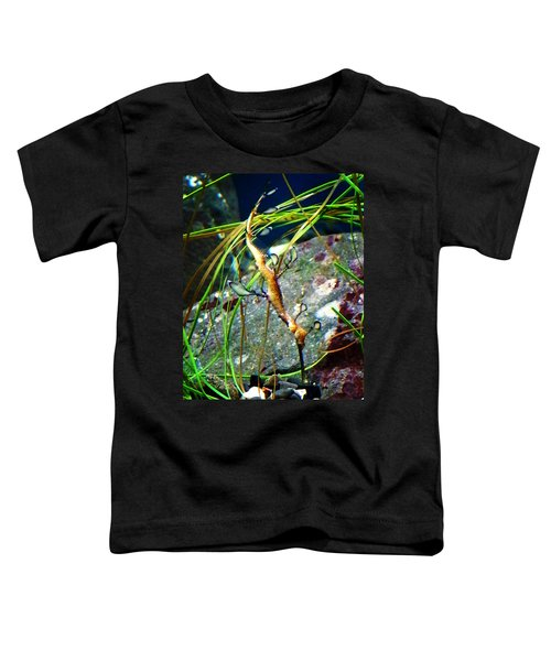 Leafy Sea Dragon  Toddler T-Shirt