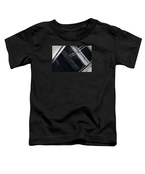 Levels Toddler T-Shirt