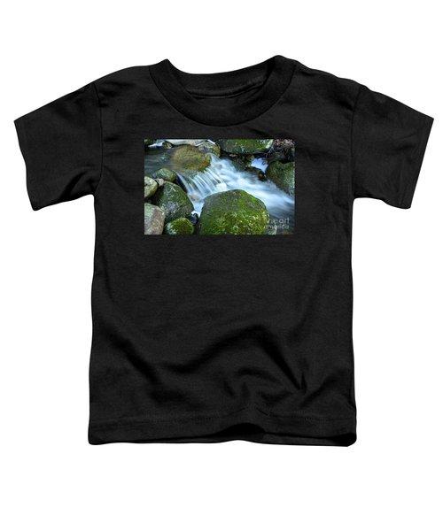 Life Toddler T-Shirt