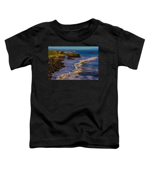 Lighthouse Point Toddler T-Shirt