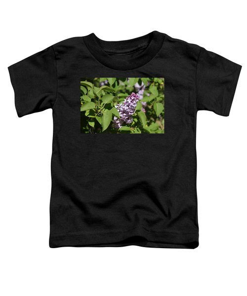 Toddler T-Shirt featuring the photograph Lilacs 5551 by Antonio Romero
