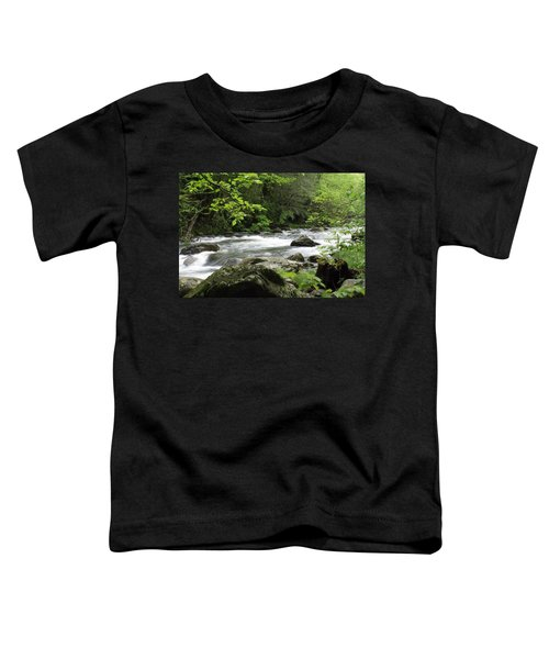 Litltle River 1 Toddler T-Shirt