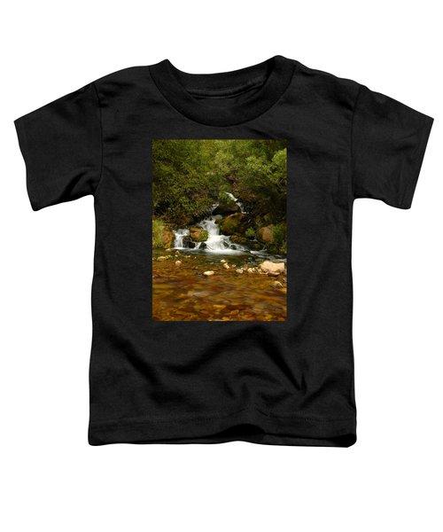 Little Big Creek Toddler T-Shirt