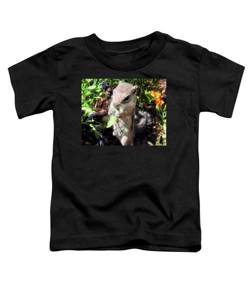 Little Nibbler Toddler T-Shirt