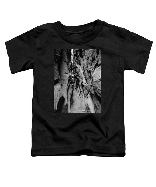 Little Wild Horse Canyon Bw Toddler T-Shirt