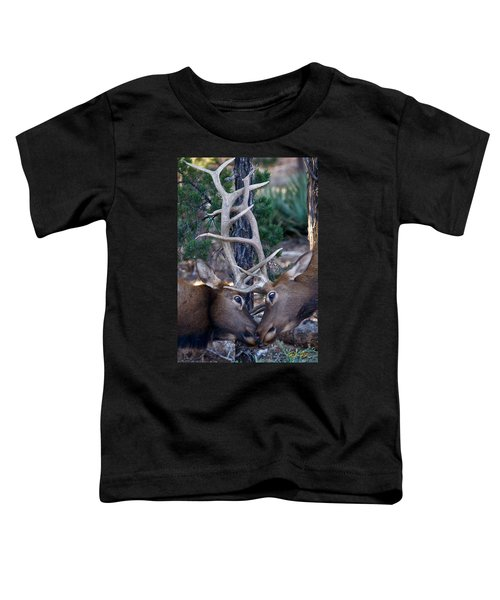 Locking Horns - Well Antlers Toddler T-Shirt
