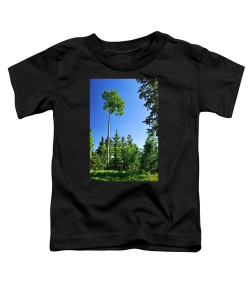 Lone Aspen Toddler T-Shirt