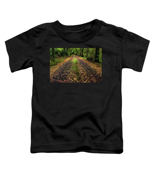Looking Down The Lane Toddler T-Shirt