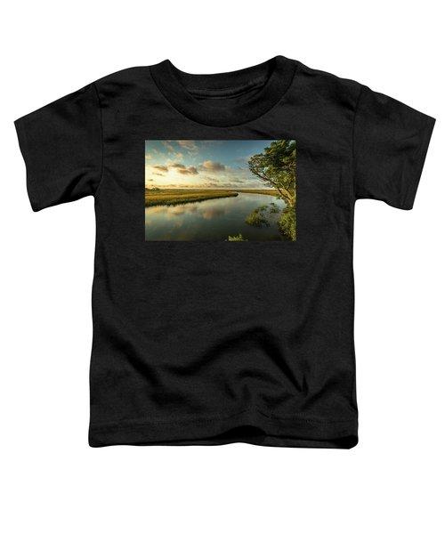 Pitt Street Bridge Creek Sunrise Toddler T-Shirt