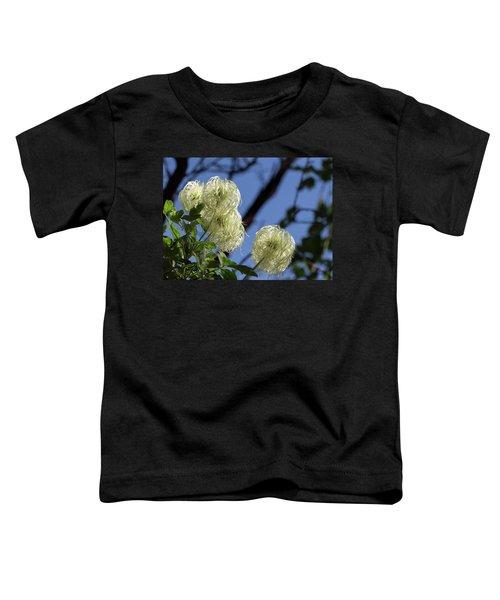 Old Man's Beard Toddler T-Shirt