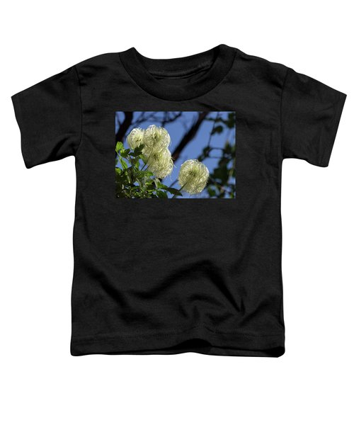 Old Man's Beard Toddler T-Shirt