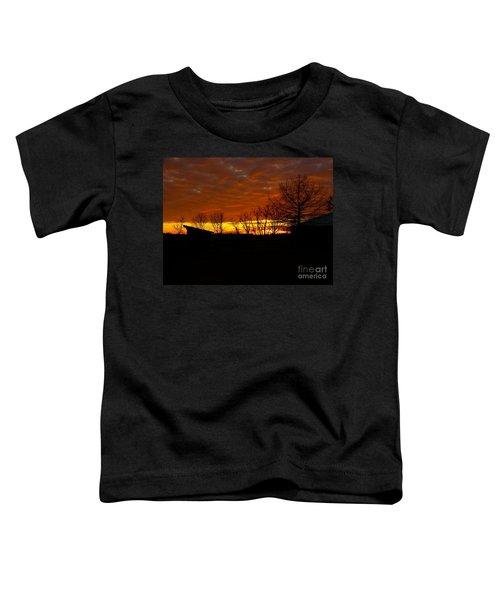 Marmalade Sky Toddler T-Shirt