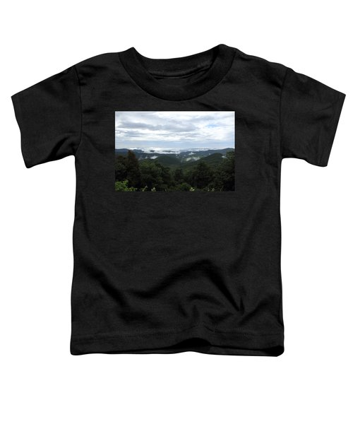 Mills River Valley View Toddler T-Shirt