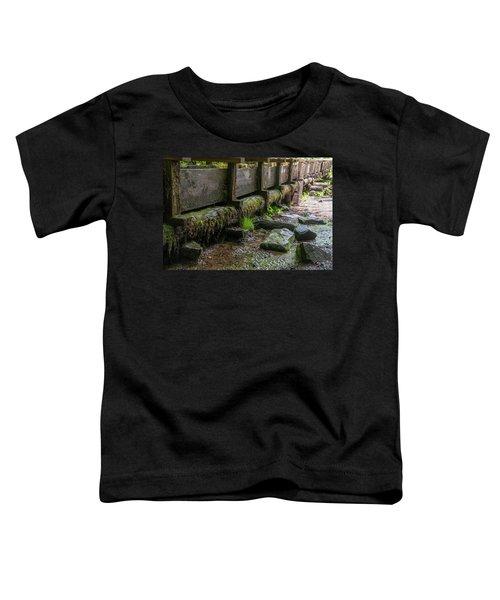 Mingus Mill Millrace Toddler T-Shirt