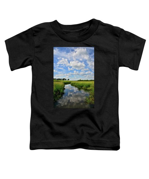 Mirror Image Of Clouds In Glacial Park Wetland Toddler T-Shirt