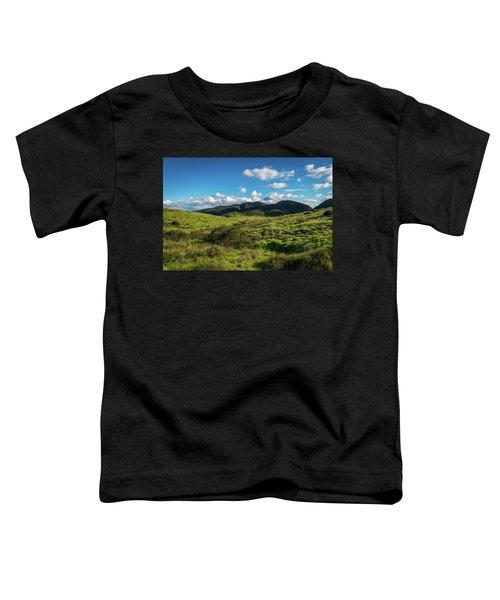 Mission Trails Grasslands Toddler T-Shirt