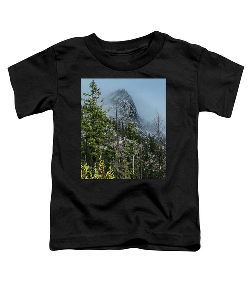 Misty Pinnacle Toddler T-Shirt