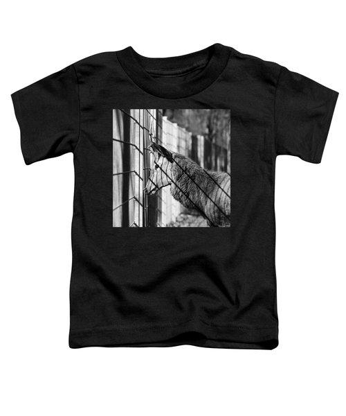 #monochrome #canon #cage #blackandwhite Toddler T-Shirt