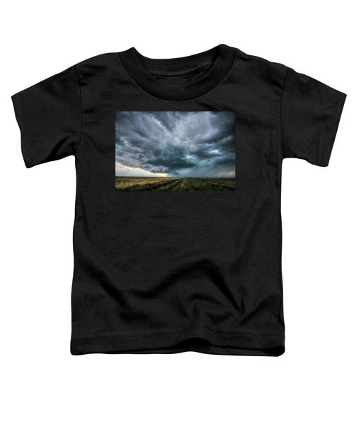 Montana Thunderstorm Toddler T-Shirt