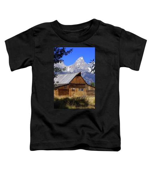 Mormon Row Barn  1 Toddler T-Shirt