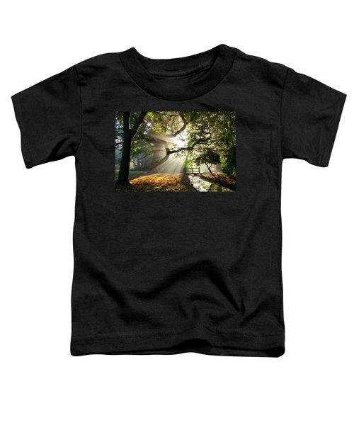 Morning Sunrise In Hampden Park Toddler T-Shirt