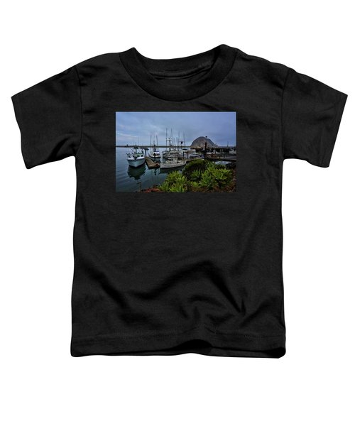 Morro Bay Toddler T-Shirt