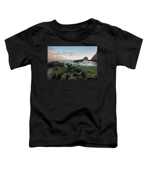 Mossy Rocks At The Beach Toddler T-Shirt