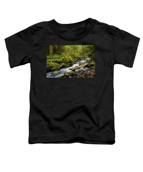 Mount Hood Creek Toddler T-Shirt