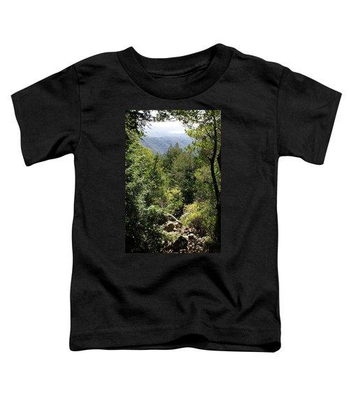 Mount Tamalpais Forest View Toddler T-Shirt