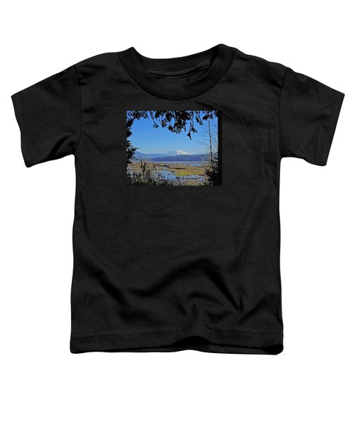 Mt St Helens Toddler T-Shirt