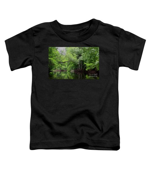 Mystical Withlacoochee River Toddler T-Shirt