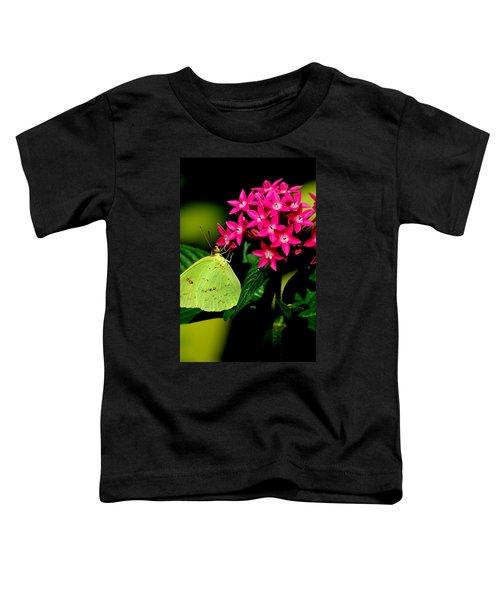 Mystical World 3 Toddler T-Shirt