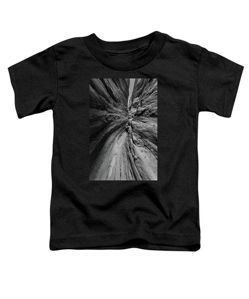 Narrow Lines Toddler T-Shirt