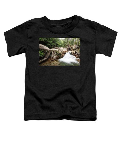 New England Waterfall Toddler T-Shirt