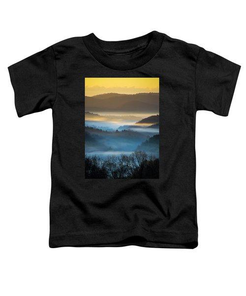 New River Fog Toddler T-Shirt