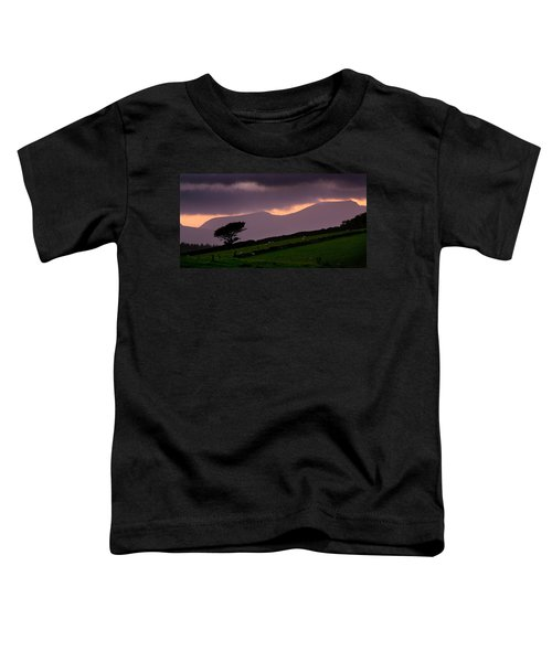 Northern Rhinogs Toddler T-Shirt