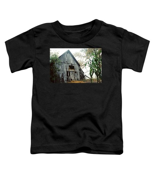 Old Barn In The Morning Mist Toddler T-Shirt